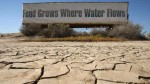 Diminishing Resources: The Drought In California